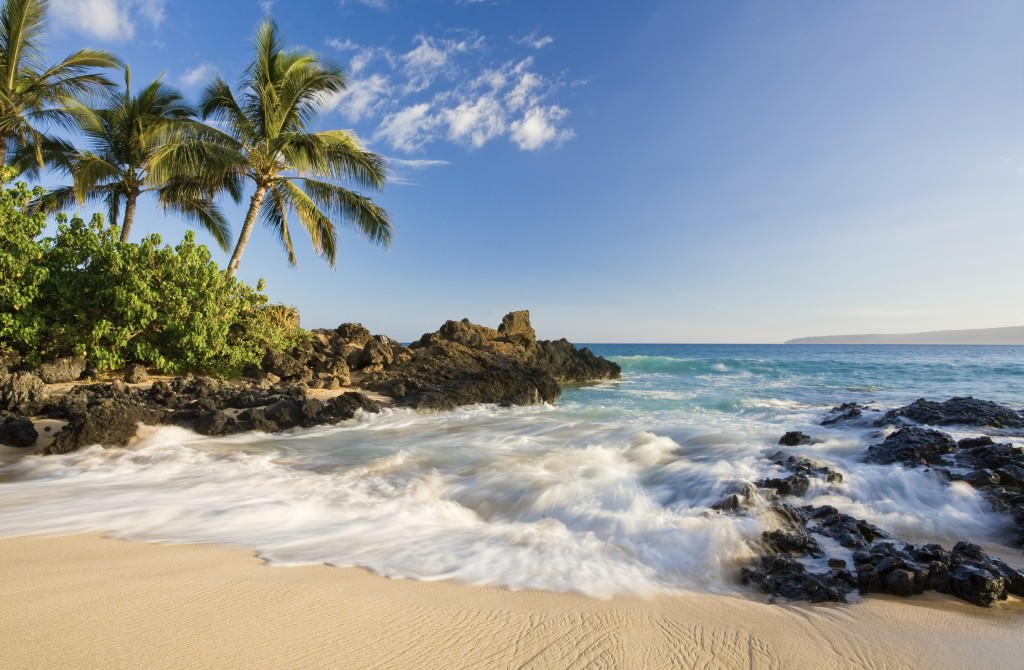 maui_hawaii_beach_tropical