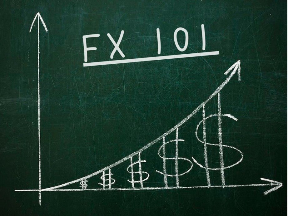 Forex cash evolution download