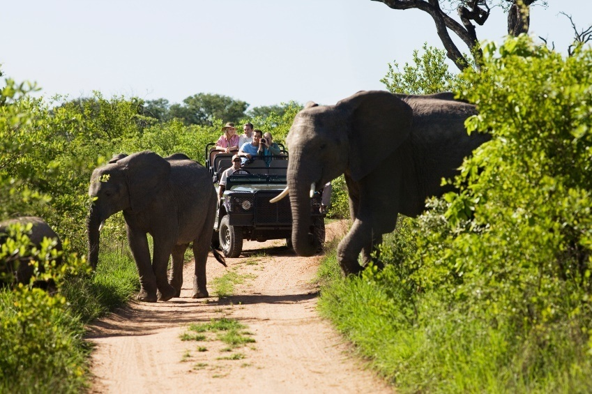 Kruger_National_Park_South_Africa
