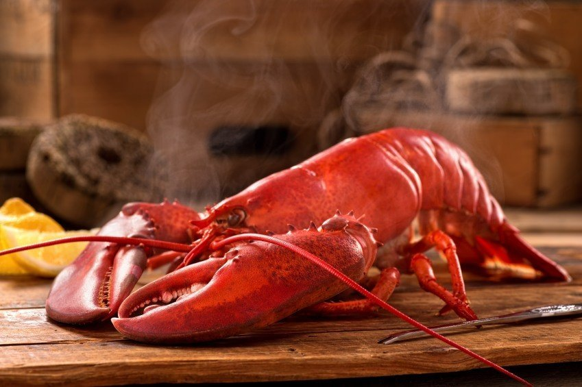 lobster_places_to_go_in_canada
