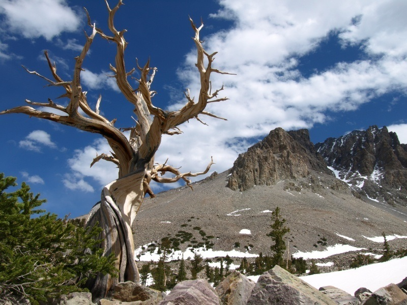 great_basin_where_to_go_in_the_mountain_states