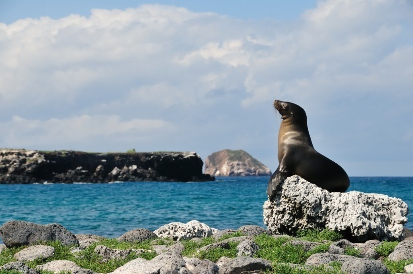 galapagos_best_educational_trips
