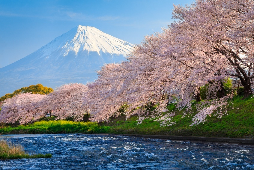 mt_fuji_where_to_go_in_japan