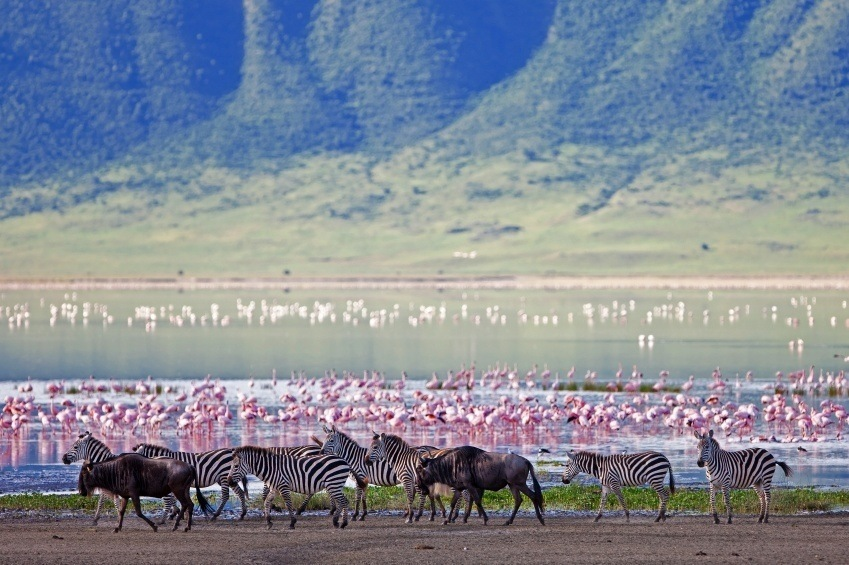 ngorongoro_where_to_go_in_tanzania
