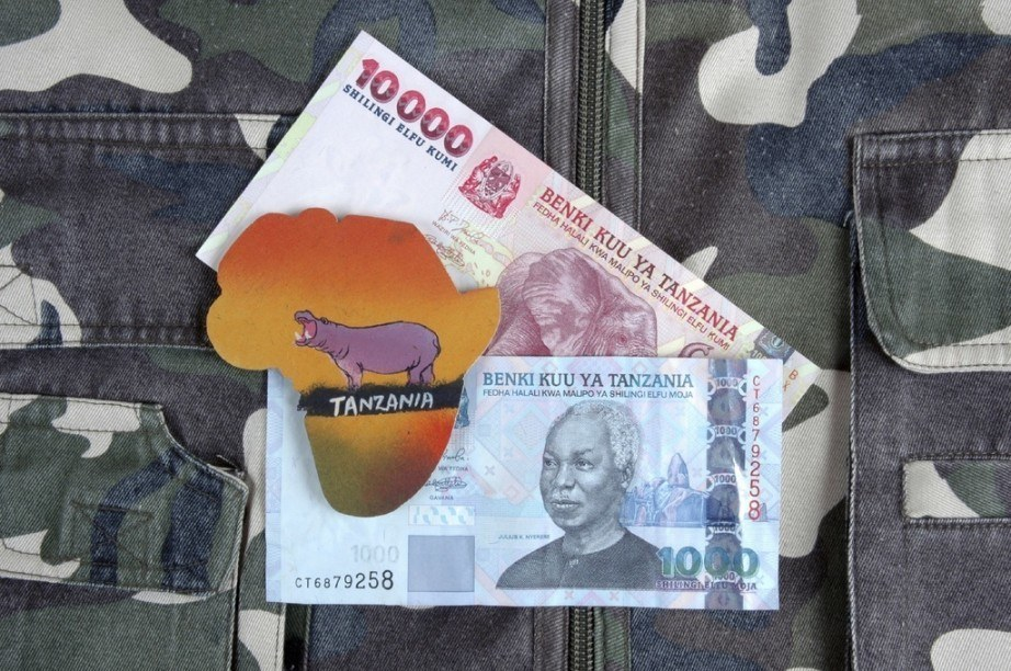 Tanzanian Shilling Spotlight Tzs Value Design And History