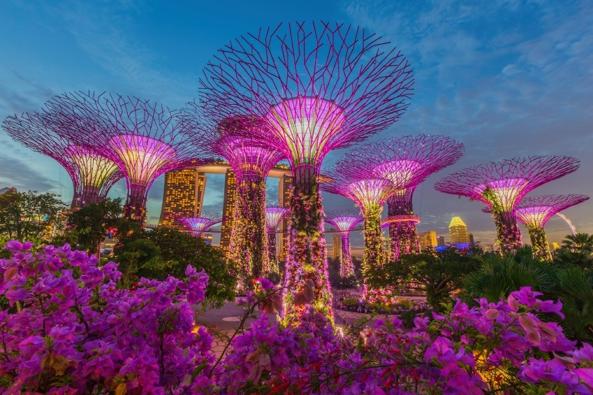 gardens bay singapore supertrees