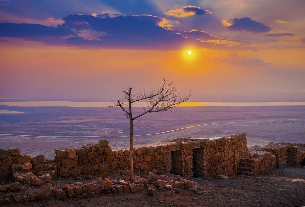 sunrise fortres israel tree water