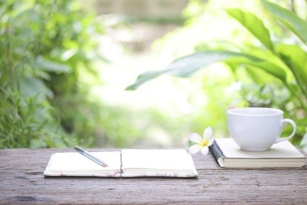 submit articles coffee notebook plants table pen writing