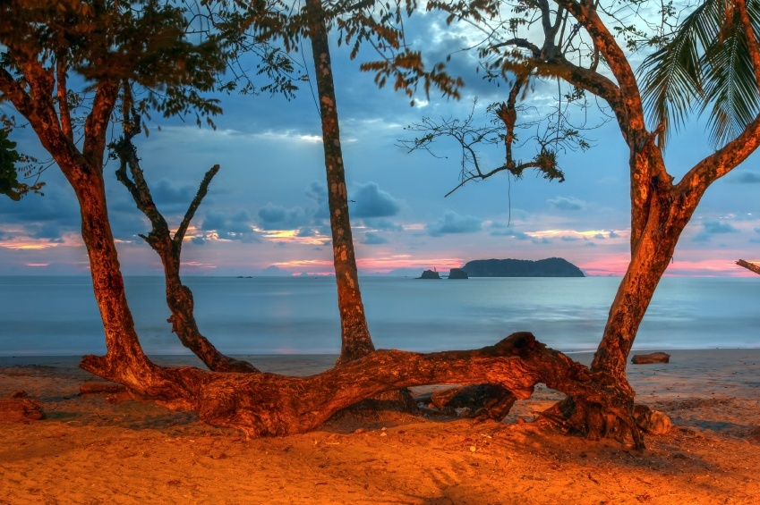 manuel antonio national park costa rica sunset beach palm trees