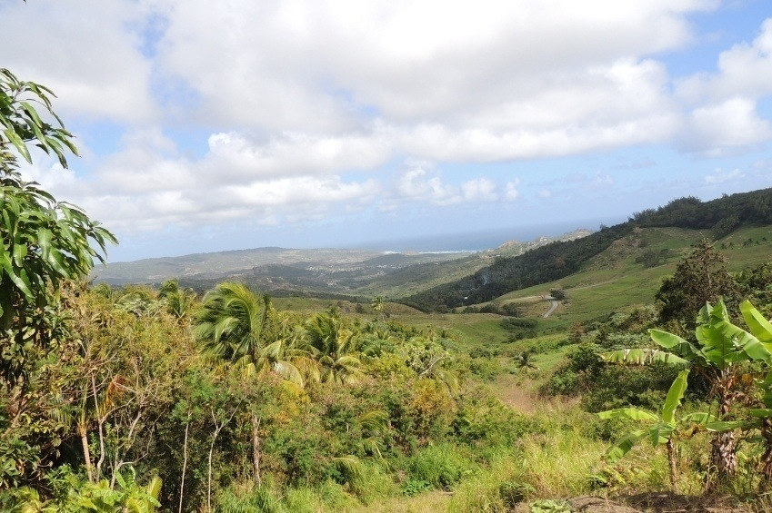 landscape barbados hills countryside caribbean