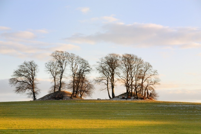 landscape burial mound denmark countryside trees