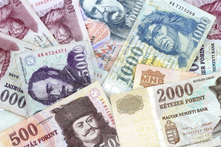 need to buy hungarian forint notes money portrait