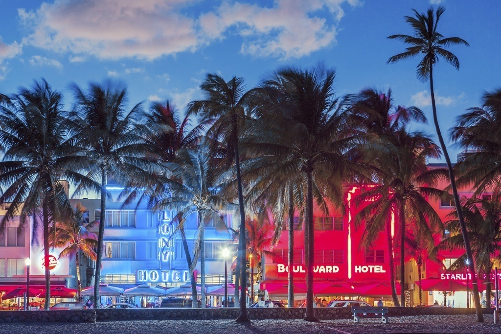 best reading week destinations miami beach trees lights