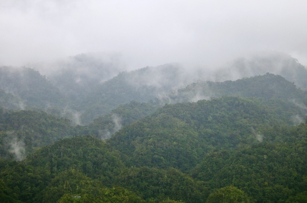 blue mountains fog haze jamaica nature