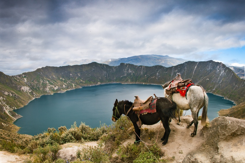 ecuador lake horses crater mountain