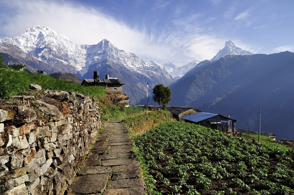 nepal country mountain field buildings view himalaya