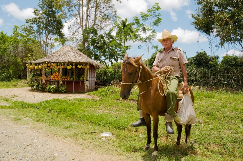 holguin horse man farming countryside rural cuba