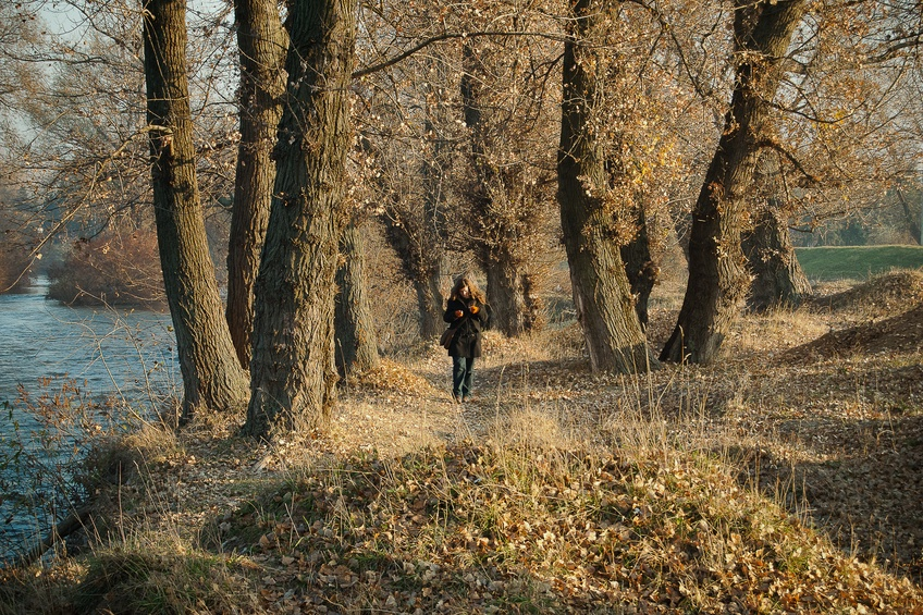 serbia forest woman nature country