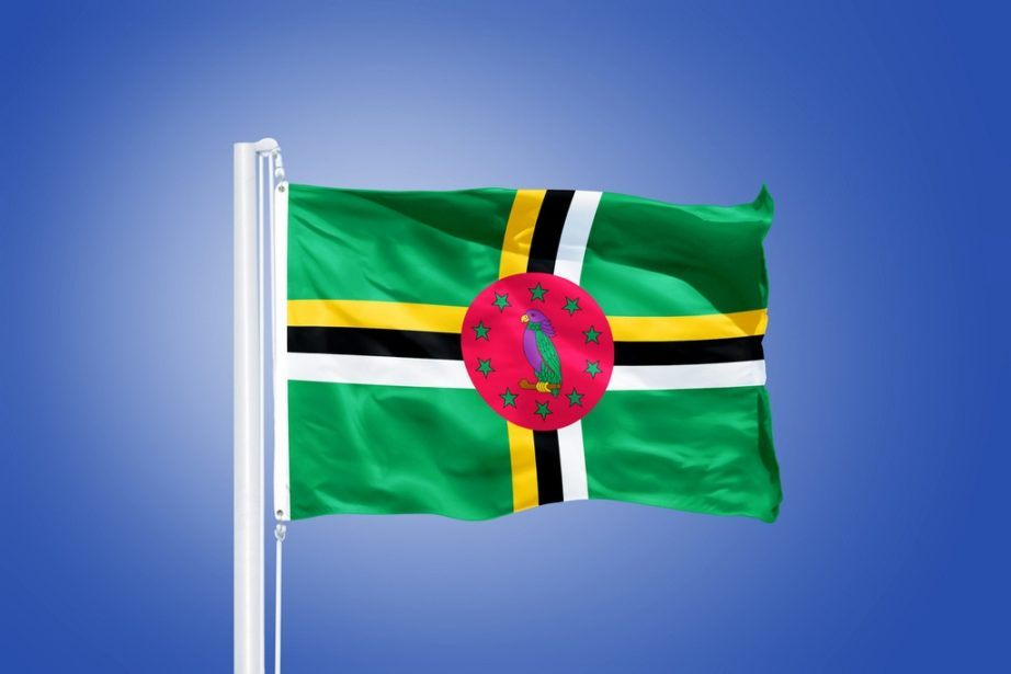 dominica flag waving green yellow white black red parrot stars