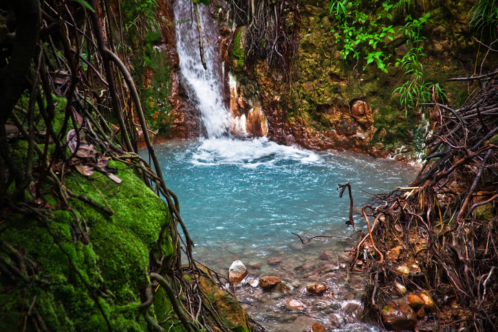 pool dominica waterfall forest nature