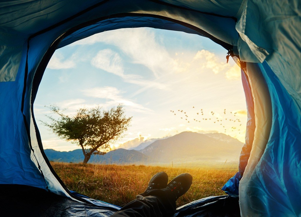 camping adventure tree plains morning landscape beautiful