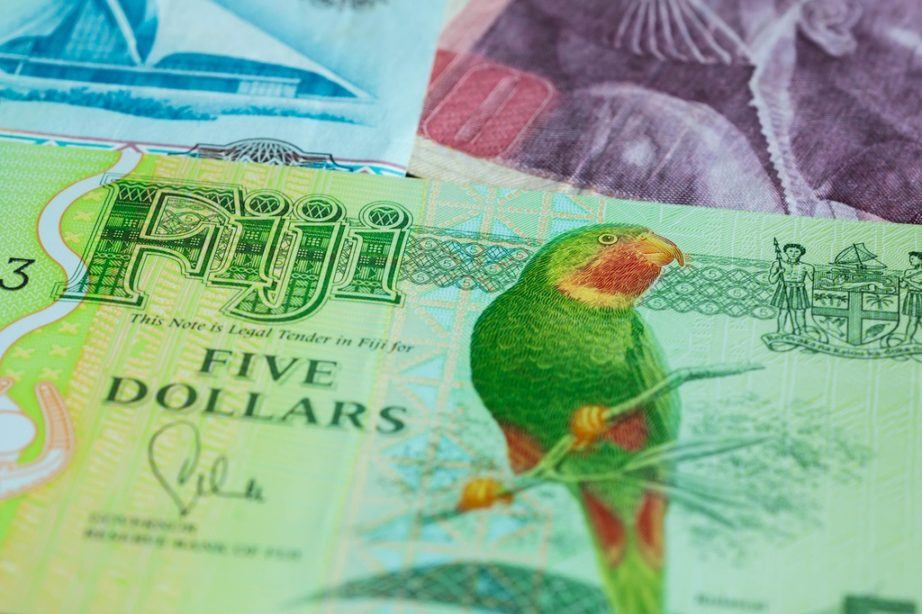 fijian dollar fiji currency parrot five dollars bird
