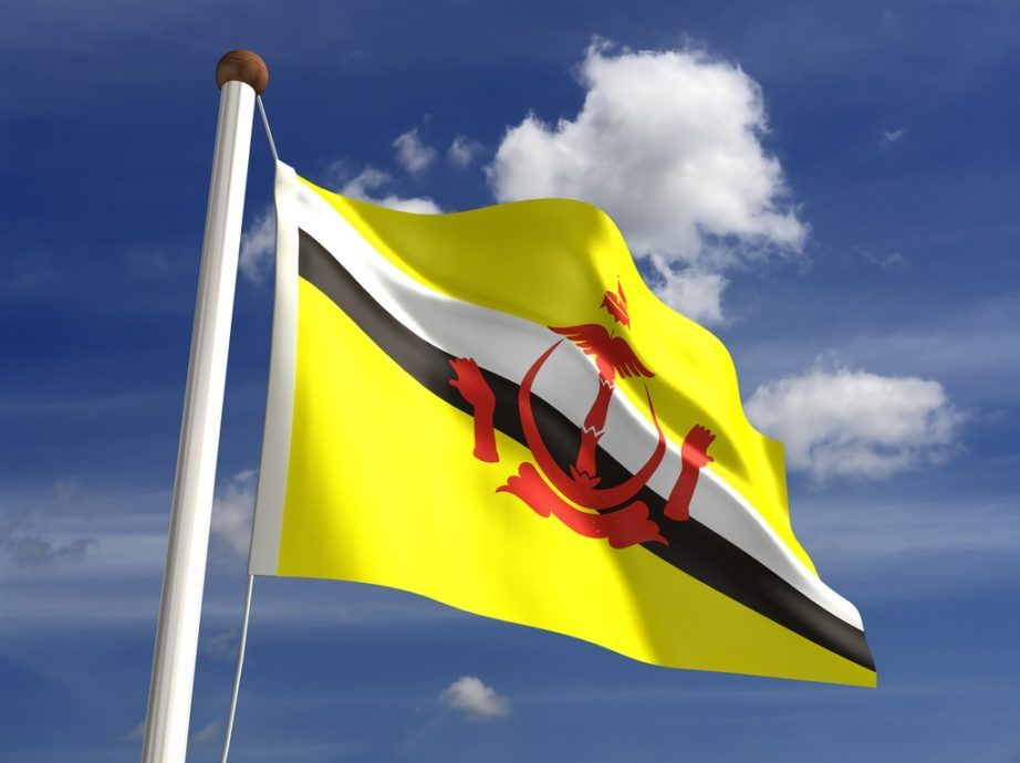 brunei flag yellow black white crest