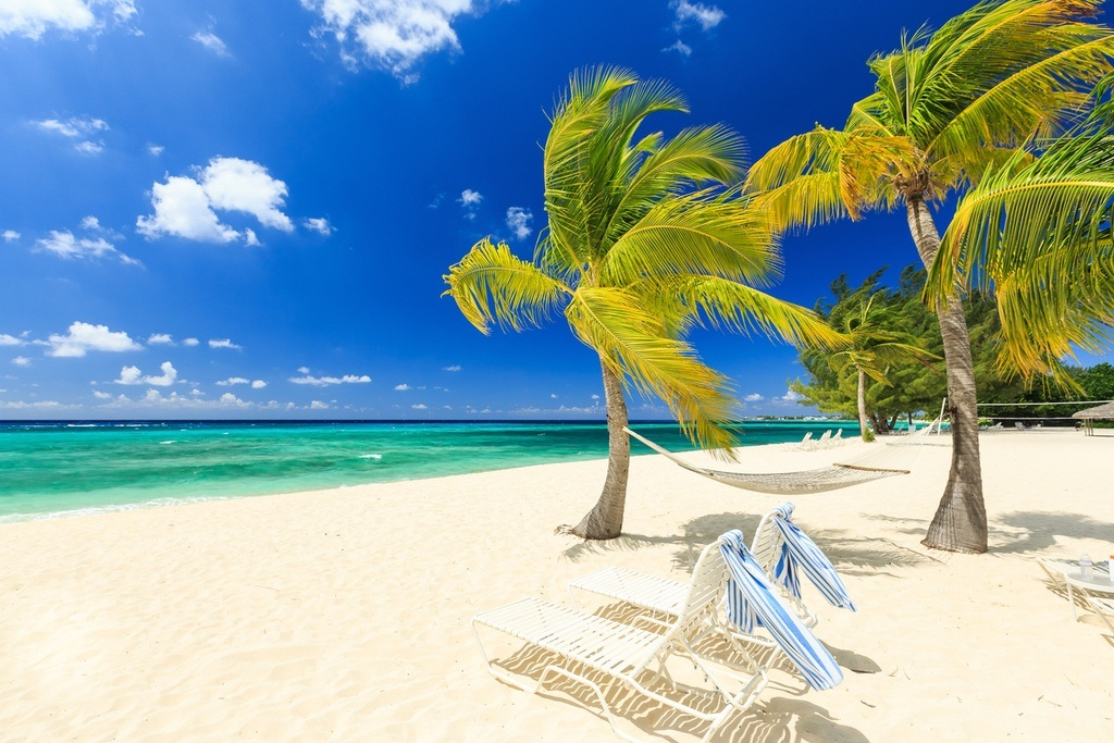 cayman islands travel beach white sand palm trees caribbean sea