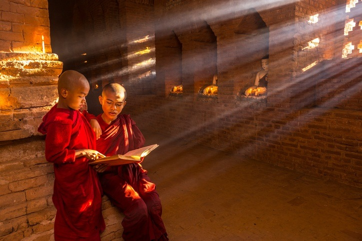 young buddhist monks myanmar robes reading sunlight