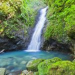 grenada travel au coin waterfall nature pool forest