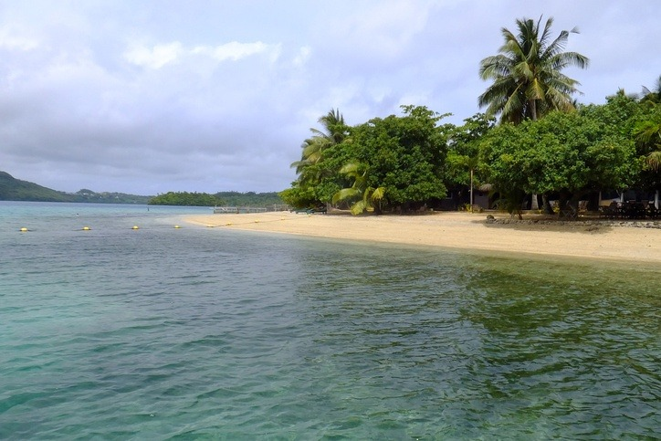 tonga beach tropical water sand trees