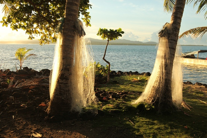 samoa manono beach trees island water ocean