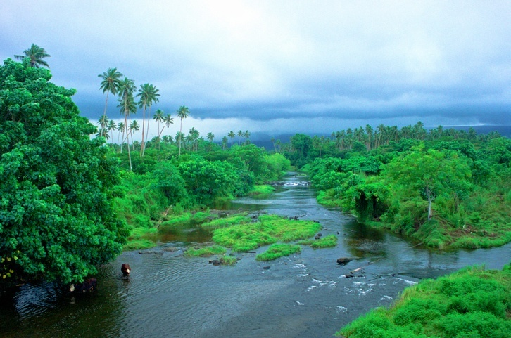 savai'i landscape water forest nature remote samoa