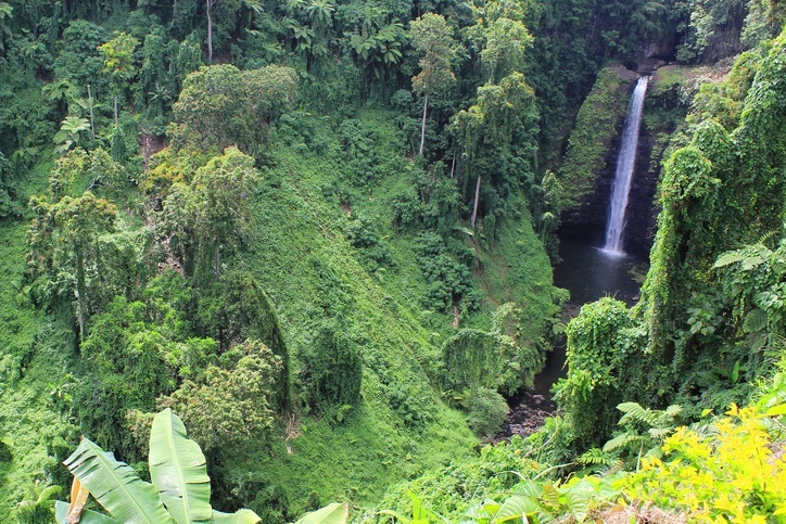 samoa waterfall nature green water
