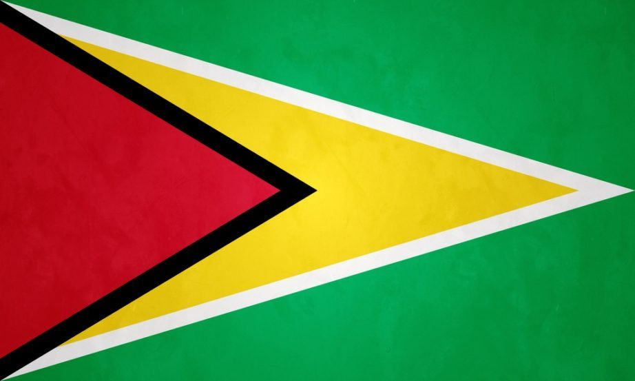 guyana flag arrowhead golden red black green white