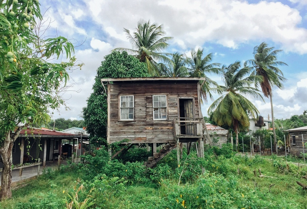 guyana house forest stilts rural