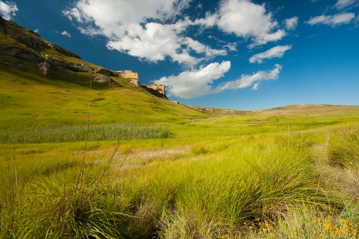 lesotho highlands grass mountains plain