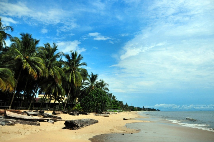 gabon beach ocean sand palm trees
